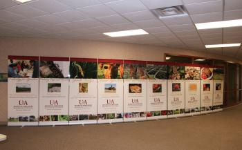 Photo of Ag Displays
