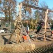 Fall agritourism operation with swing set and animal viewing