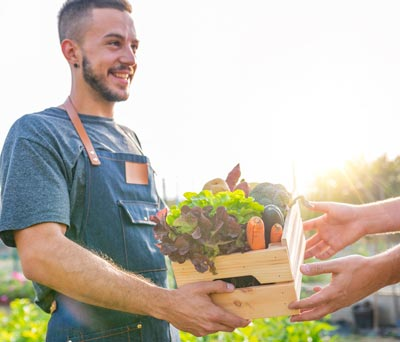Community Supported Agriculture (CSA) Businesses