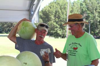 Farmers market vendors selling watermelons