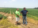 Arkansas County Staff Chair Chuck Capps discussing PHAUCET irrigation with a local farmer.