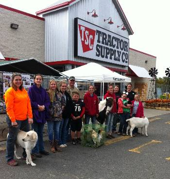 Picture of 4-H'ers With Animals at Tractor Supply