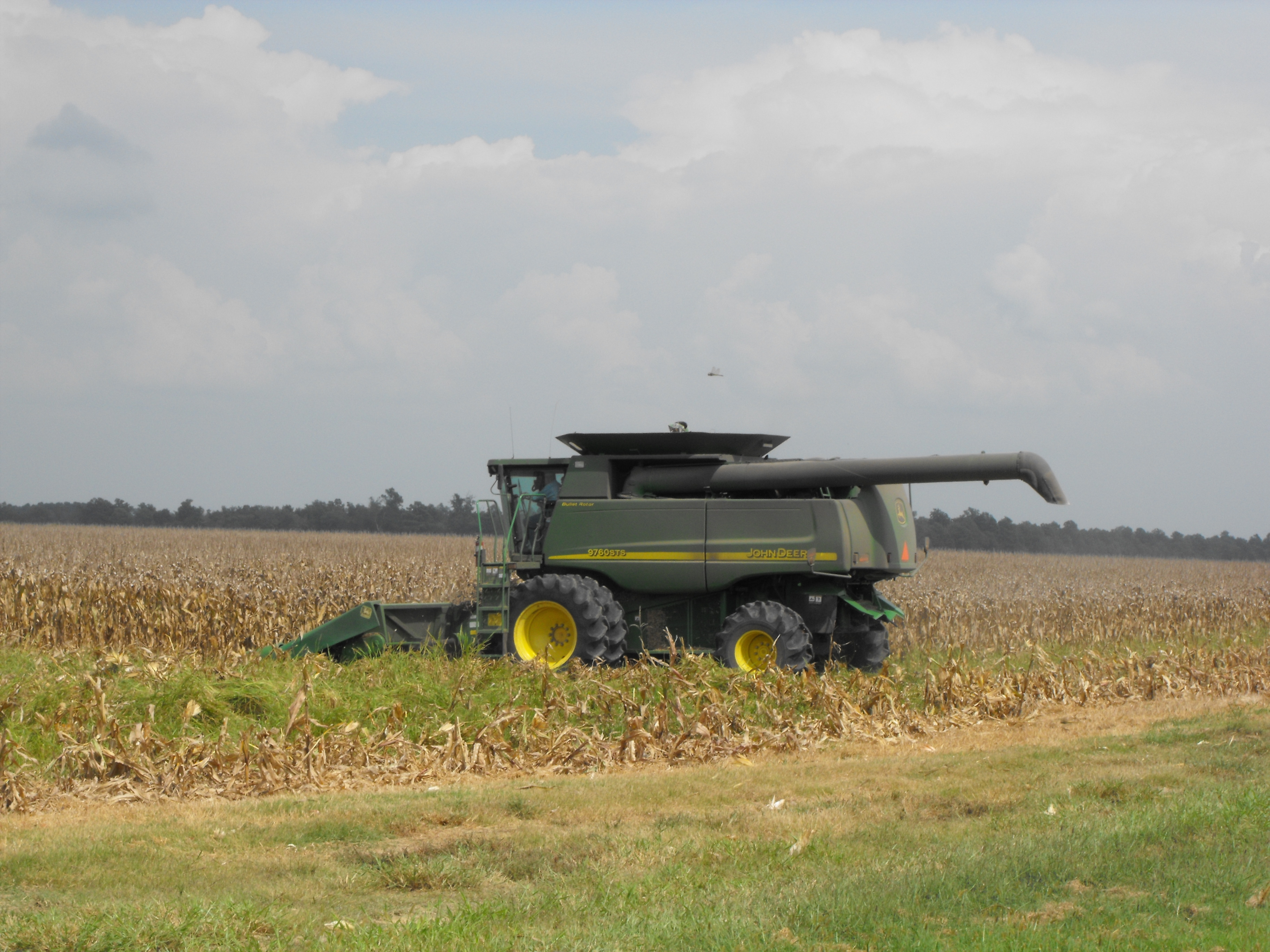 Picture of a combine in a field