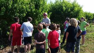 4Hers look at peach trees while attending Farm to Table Camp
