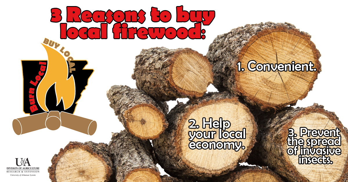 Arkansas firewood resources - what kind of firewood is best?