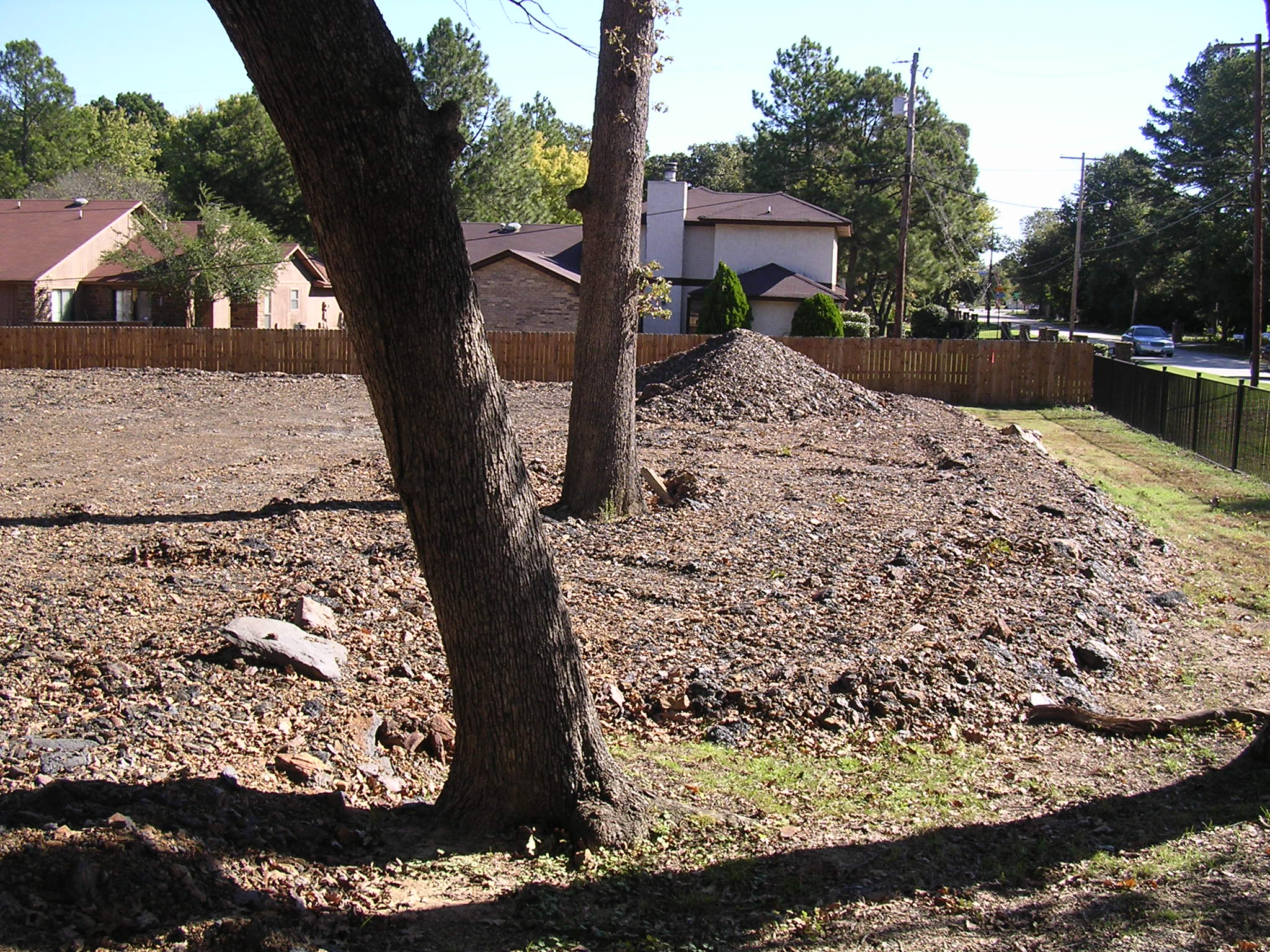 photo of soil piled up around tree roots in a new yard