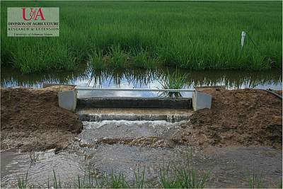 Irrigation Methods - Flood (Levee) Weir | Water Conservation | Environment & Nature | Arkansas Extension