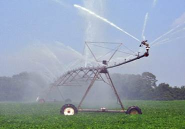 Row Crops & Irrigation | Arkansas