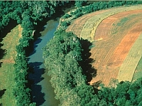 Conservation for Landowners | Arkansas