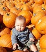 baby boy sitting on pumpkins in a pumpkin patch