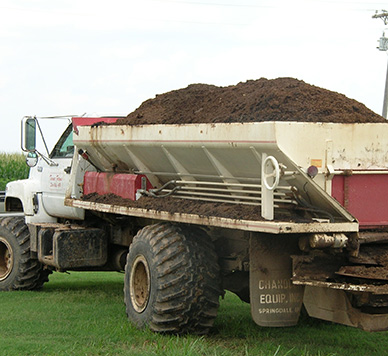 Large dump truck filled with a brown pile of chicken manure.