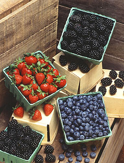 Berries | Fruits & Nuts | Commercial Horticulture | Arkansas Extension