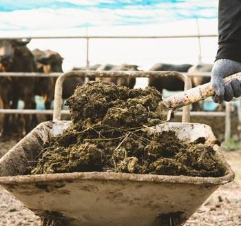 Biological Soil Amendments of Animal Origin Recordings