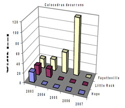 Bar chart showing Shoot Width for Calocedrus decurrens. Link to larger picture. Select back button to return.