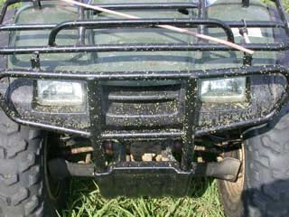 Picture of Dallisgrass Honeydew Seed stuck on a 4-wheeler