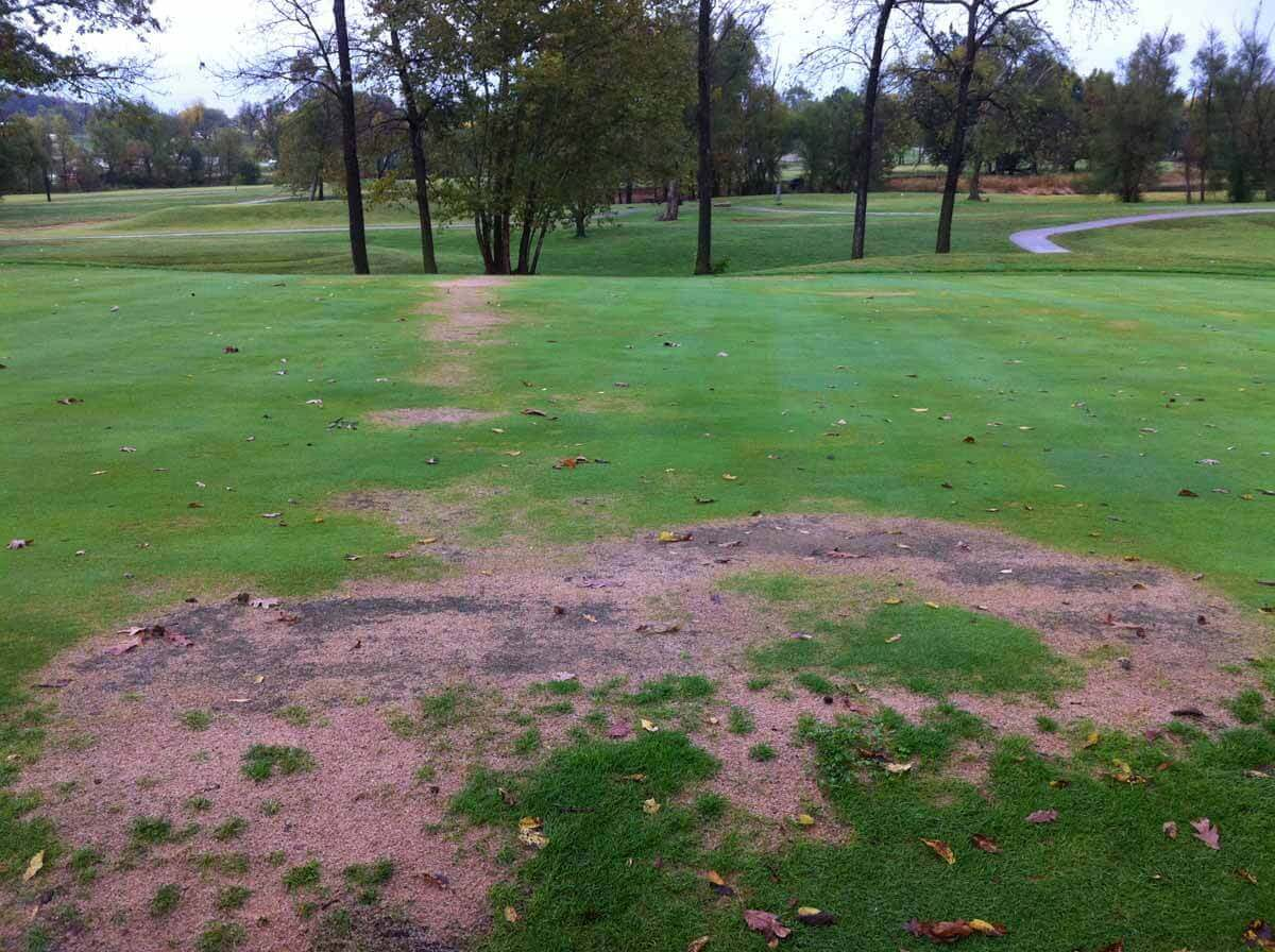 Bermudagrass with Oxadiazon Direct Application