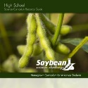 Soybean curriculum resources book cover image