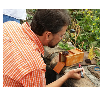 Picture of Apiculture Instructor Jon Zawislak marking a honey bee
