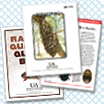UA Beekeeping Publications