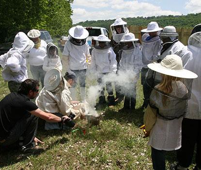 Take a Beekeeping Class