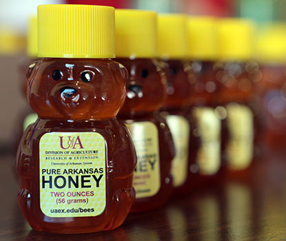 Learn All About Honey