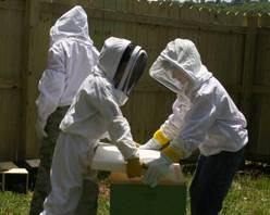 two young beekeepers holding a hive