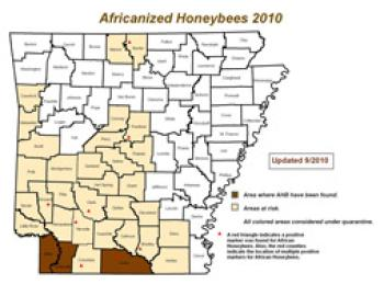 Africanized Honey Bees in AR map with highlighted counties indicating where bees are located.