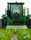 Row crop tractor spraying pesticide