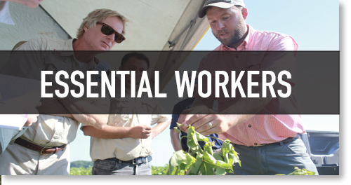 Ag is Essential, Critical Work