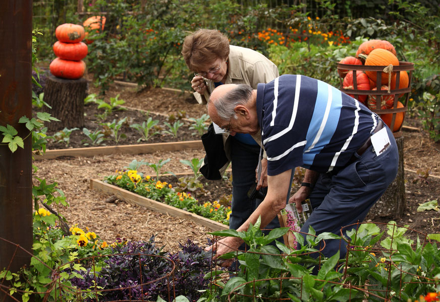 Gardening has a broad appeal with lifelong learning for all | Yard & Garden | Arkansas
