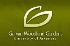 Garvan Woodland Gardens | University of Arkansas