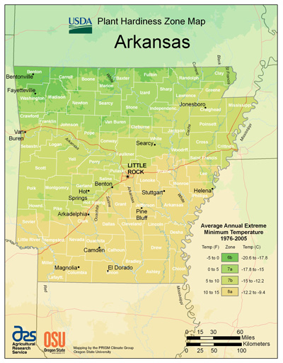 Picture of the U S D A Plant Hardiness Zone Map of Arkansas