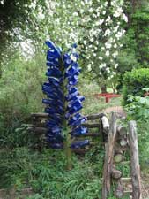 Picture of a bottle tree
