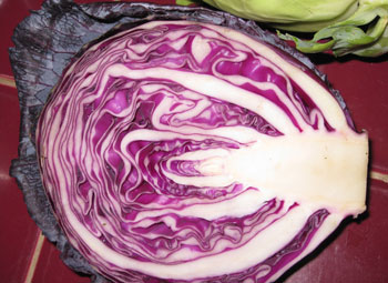 Picture of red cabbage.