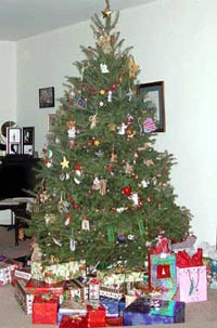 Picture of a decorated Christmas Tree with packages under the tree.
