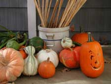 Picture of pumpkins and gourds on a porch