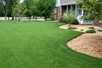Lush Lawns | Yard & Garden | Arkansas Extension