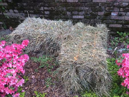 two straw bales on the ground in a garden