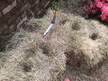 Two straw bales with three holes cut in each top. Cutting tool nearby.